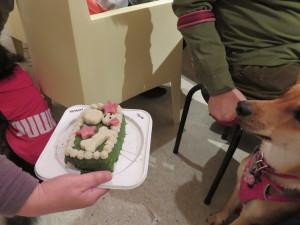 ケーキとケン