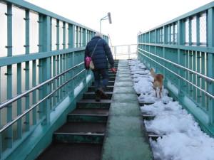 歩道橋のケン